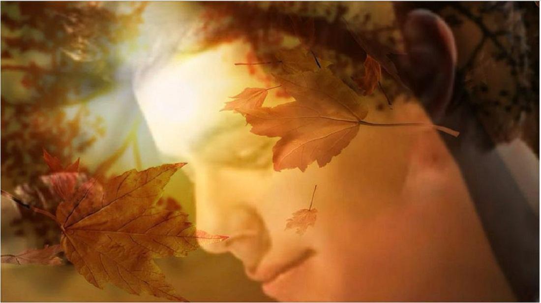 David~ Thanksgiving Reflection~ edit credit Patty-Ann