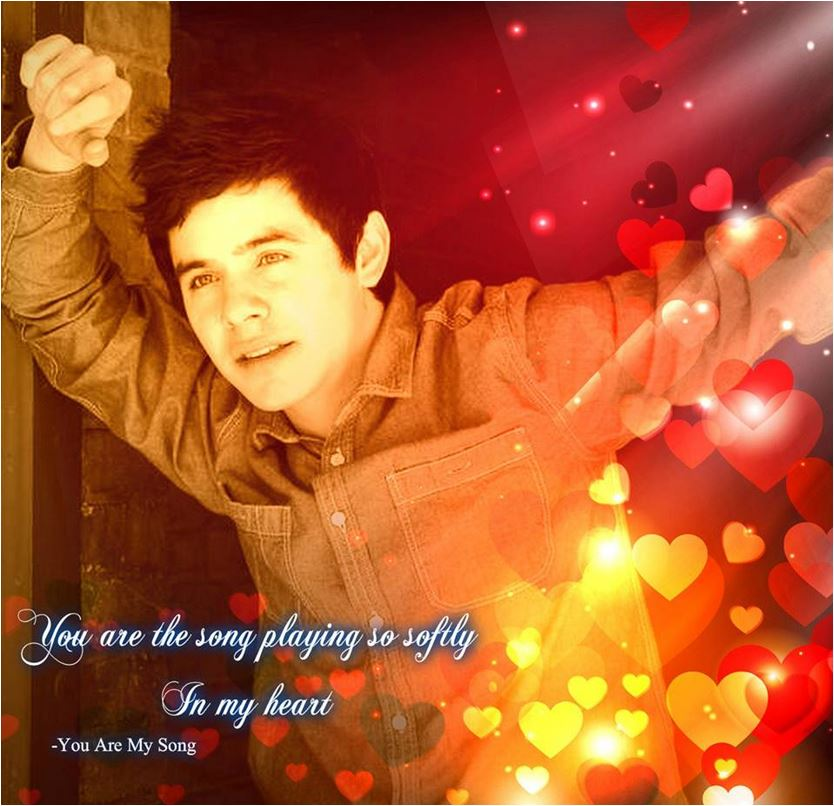 You Are My Song -art- credit David Archuleta Brazil shared by Patty-Ann