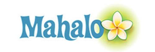 following-google-s-algorithm-change-mahalo-lays-off-10-of-staff-889bb9f555