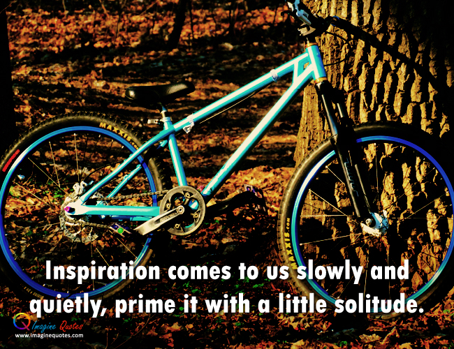 Inspiration_comes_to_us_quote836