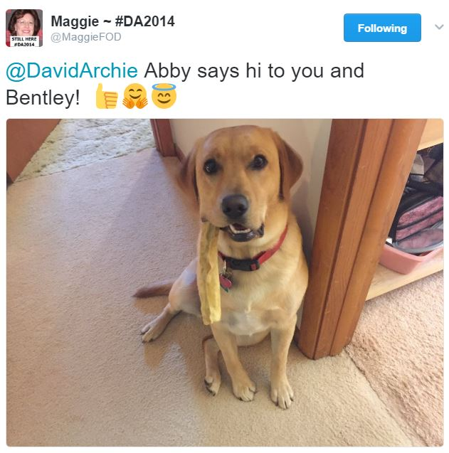 fan find Abby says hi to Bentley credit Maggie