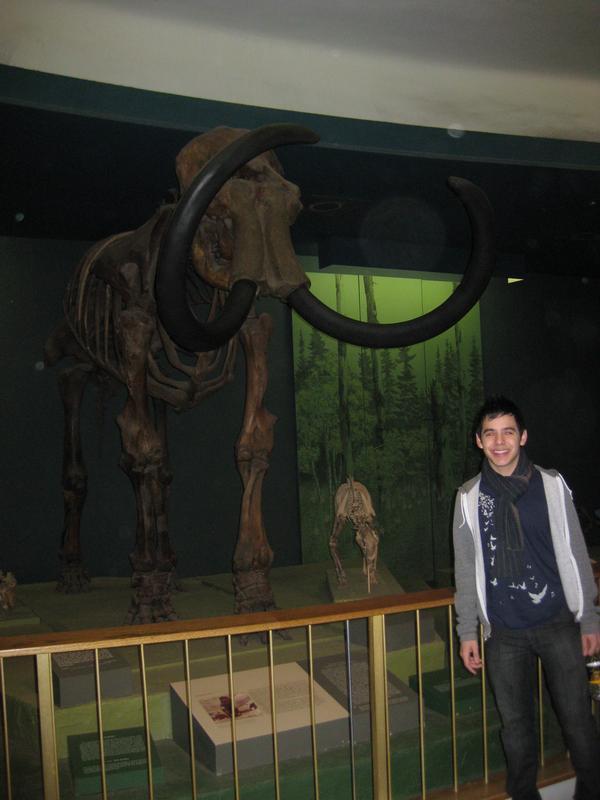 david-museum2