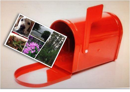 postcard & mailbox