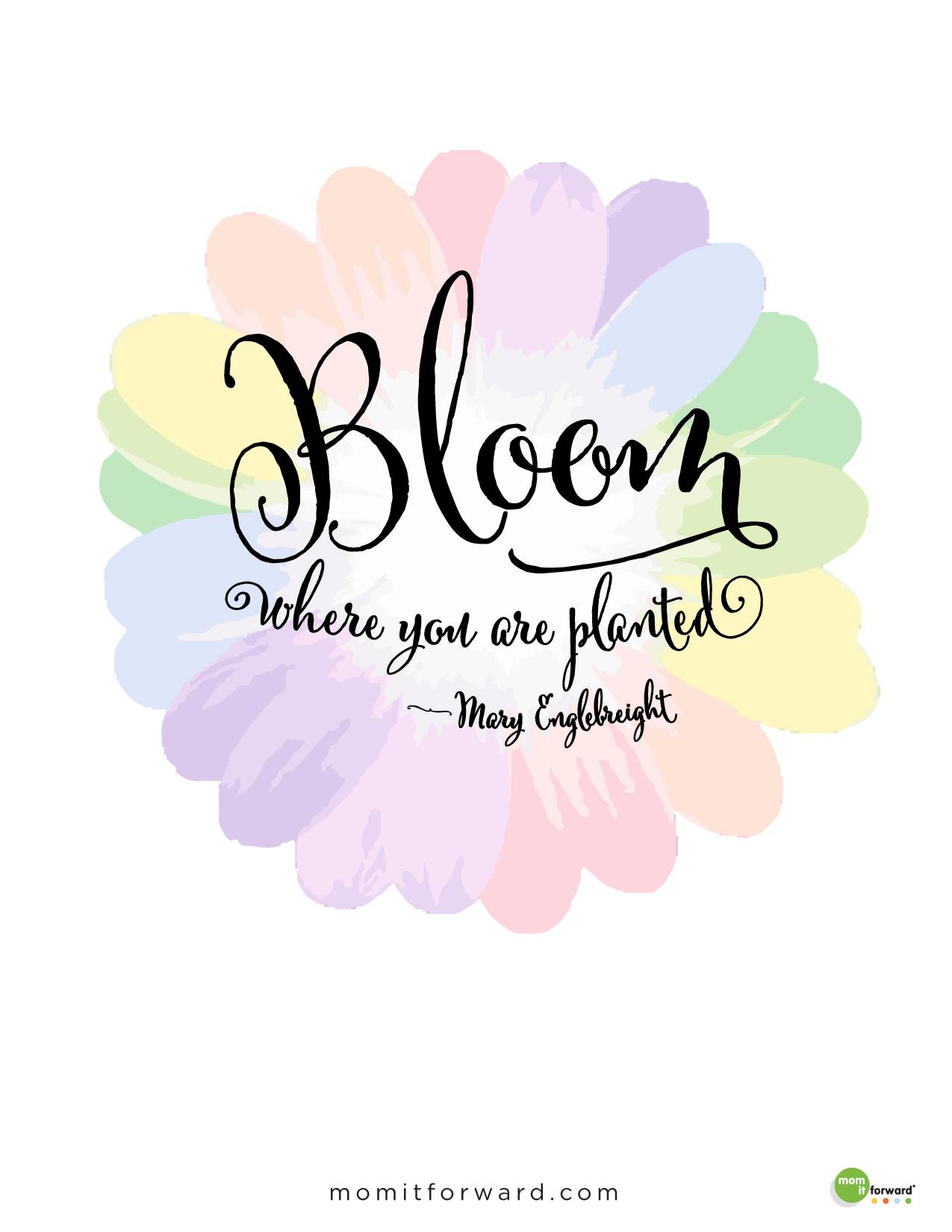 Quote Maryenglebreight Bloom 01