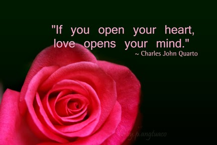Love Open Your Heart Quote Fans Of David Archuletafans Of David