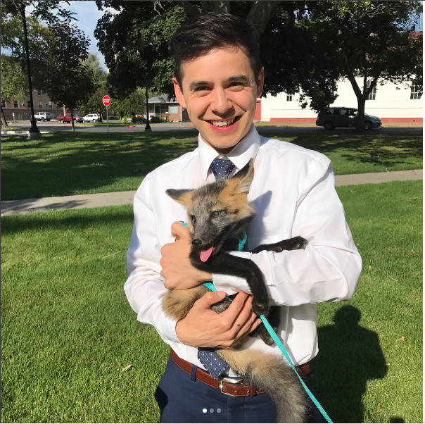 Image result for david archuleta and fox