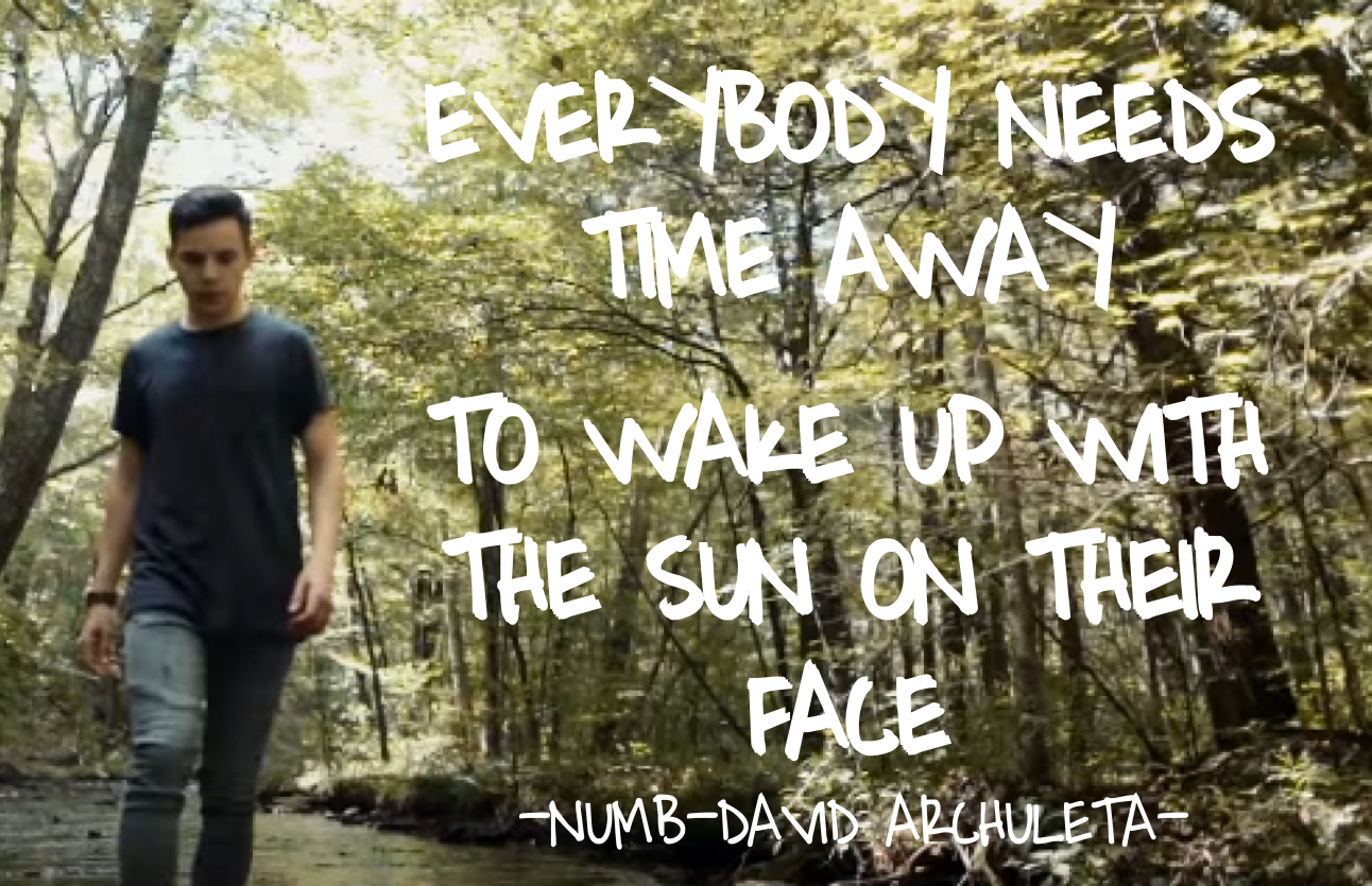 Jessica's edits showing David Archuleta walking in the park with a lyric from Numb